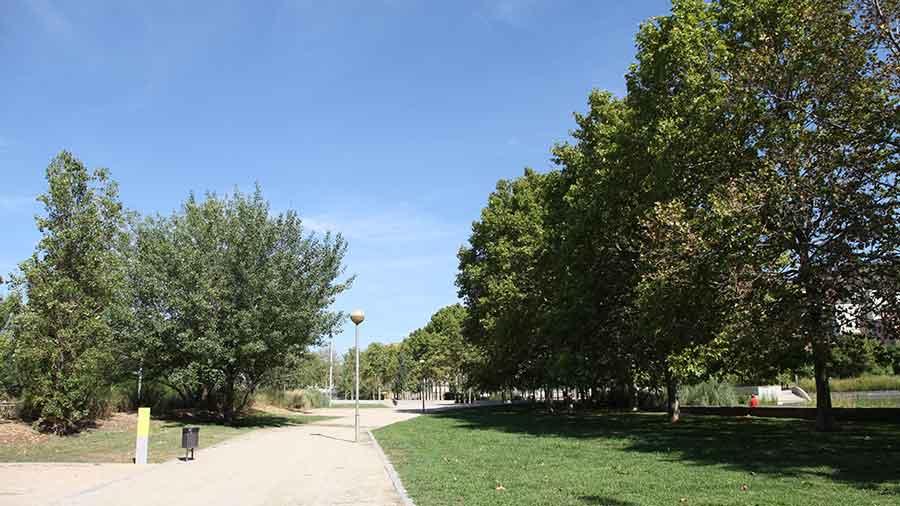 Hercal Ha Executat La Fase 1 Del Projecte De Millora Del Parc De Can Zam.