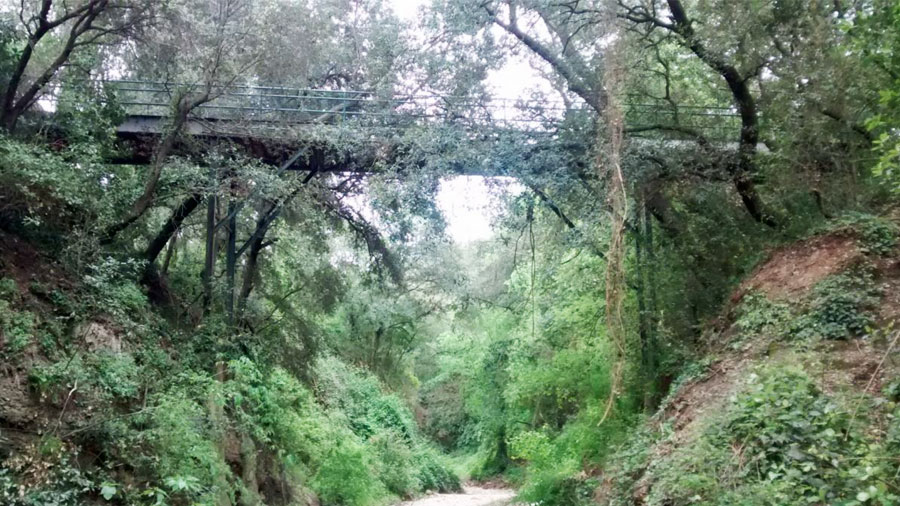 Obras de rehabilitación de la pasarela de Can Vinyers