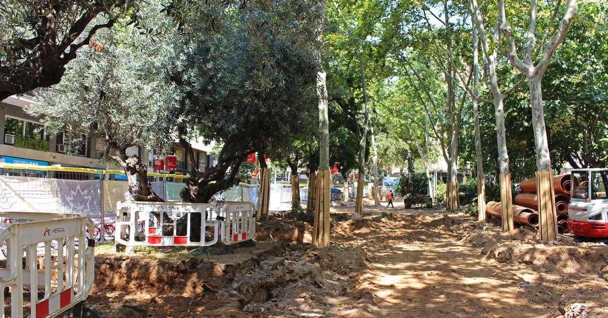 PROYECTO EJECUTIVO De Renovación De Los Jardines De Montserrat Y Sus Entornos En El Distrito Del Eixample